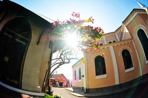 Vẻ đẹp nhà thờ Con Gà qua ống kính độc giả